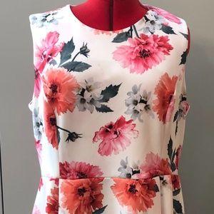 CALVIN KLEIN WOMEN'S DRESS 20W